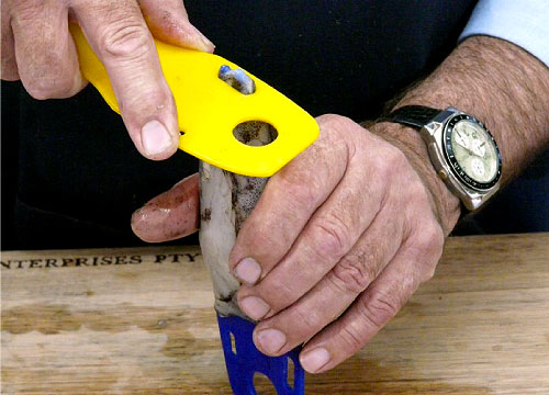 Step 6. Stand up the SquidEzy™ and use the slot from one of the other tools to release the tip of the membrane.